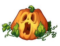 Frightened pumpkin Stock Photography
