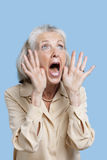 Frightened senior woman screaming against blue background Royalty Free Stock Images