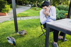 Frightened Young Man Staring at Pair of Ducks. Frightened Young Man Sitting at Outdoor Table and Staring Nervously at Pair of Mallard Ducks Grazing on Green Royalty Free Stock Photos