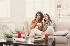 Frightened young women watching TV at home. Frightened young women relaxing and watching scary movie at home, female friends having rest after hard week, copy Royalty Free Stock Image