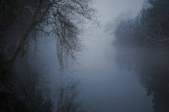 Frightening river. Mysterious and frightening river in a foggy night royalty free stock photography
