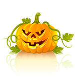 Frightful halloween pumpkin vegetable. With green leaves -  illustration Royalty Free Stock Image