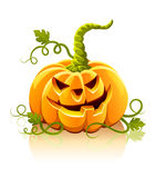 Frightful halloween pumpkin vegetable isolated. Illustration Royalty Free Stock Photo