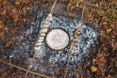 Frigideira com pão nos carvões da floresta do fogo na primavera imagem de stock