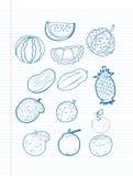 Frihandsteckningsfrukt på ett ark Arkivbilder