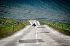 Frihet av sheeps Royaltyfri Foto