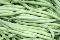 Frijole pods. The background of fresh frijole pods Stock Image