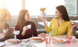Frinds femelles heureux buvant du café et causant au café Photos stock
