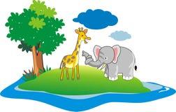 Frindship van olifanten en girrafe Royalty-vrije Stock Foto's