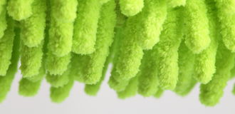Fringe green background Royalty Free Stock Images