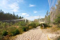 Fringilla - bird catching and ringing ornithological station Stock Photo