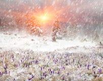 Frio e vento Fotografia de Stock