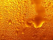 Frio fresco da cerveja Fotos de Stock Royalty Free
