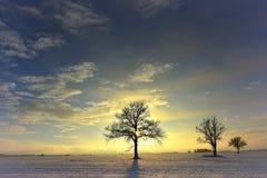 Frio, mas noite colorida do inverno em Lituânia Fotos de Stock Royalty Free