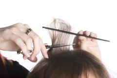 Frisör Hands Cutting Hair av en kund royaltyfri foto