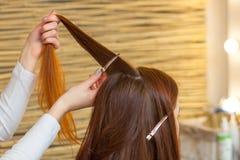 Frisör som kammar hennes långa röda hår av hans klient i skönhetsalongen royaltyfri bild