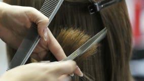 Frisören klipper flickan Gör en frisyr för en kvinna Frisyrnärbild Scissors stylisten stock video