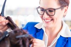Frisören som utformar kvinnahår shoppar in Royaltyfri Fotografi