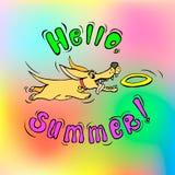 Frisbee που πιάνει το σκυλί Στοκ Εικόνα