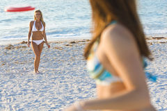Frisbee At The Beach. A beautiful young blond woman wearing a white bikini playing frisbee at the beach with her friend Stock Photography
