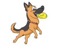 Frisbee dog  illustration Stock Photos