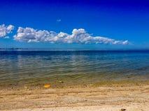 Frisbee na praia foto de stock royalty free