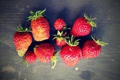 Frisch ausgewählte Erdbeeren Stockfotografie