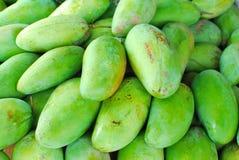 Frisch ausgewählte grüne Mangofrüchte Stockfotos