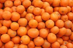 Frisch ausgewählte Orangen Indien Lizenzfreie Stockfotografie