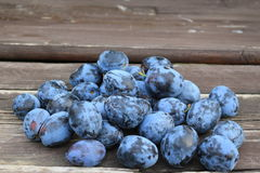 Frisch ausgewählte organische reife köstliche blaue Pflaumen auf dem alten hölzernen Hintergrund, selektiver Fokus Unscharfer Hin Lizenzfreie Stockbilder