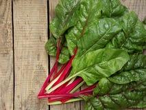 Frisch ausgewähltes Grün und Rot farbiger Mangold Stockbild