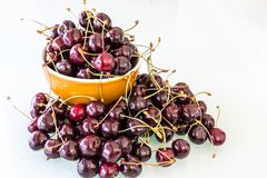 Frisch ausgewähltes Kirsche-` s vom Baum Stockfoto