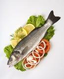 Frisch Bass-Fische mit Gemüse Stockfotografie
