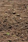 Frisch bebauter Gartenboden stockbild