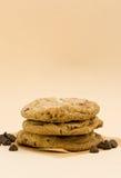 Frisch gebackene Schokoladenkekse Stockfoto