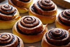 Frisch gebackene Zimtbrötchen mit Gewürzen und Kakaofüllung Selbst gemachtes Backen Nahaufnahme Kanelbulle - schwedischer Nachtis stockbilder