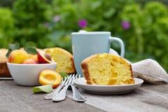 Frisch gebackener Pfirsichkuchen mit Tee stockbild