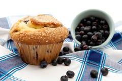 Frisch gebackenes Blaubeere-Muffin stockbild