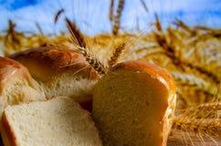 Frisch gebackenes Brot auf dem Hintergrund lizenzfreie stockbilder