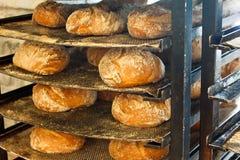 Frisch gebackenes handwerkliches rustikales Brot stockfoto