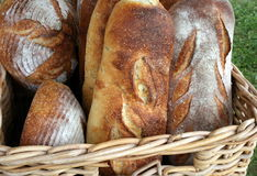 Frisch gebackenes rustikales Brot Stockfotografie