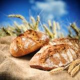 Frisch gebackenes traditionelles Brot mit Weizenfeld auf Hintergrund Stockfotografie