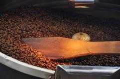 Frisch gebratene Kaffeebohnen Stockfotografie
