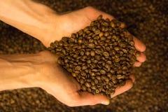 Frisch gebratene Kaffeebohnen stockfotos