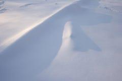 Frisch gefallener Schneehintergrund Stockfotografie