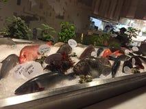 Frisch gefangene Fische Stockbild