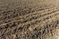 Frisch gepflogenes Ackerland im Sonnenschein Lizenzfreies Stockbild