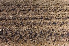 Frisch gepflogenes Ackerland im Sonnenschein Stockbild