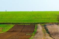 Frisch gepflogenes Feld bereit im Frühjahr zu pflanzen und zu säen stockbilder