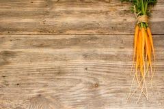 Frisch gewaschene vollständige Karotten lizenzfreies stockbild